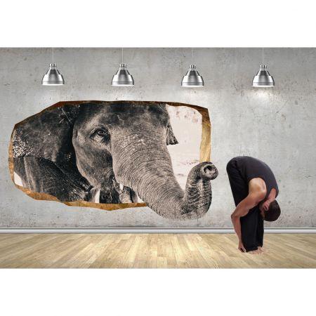 Fototapet 3D Startonight Un Elefant, luminos in intuneric, 2.20 x 1.20 m